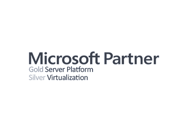 Microsoft Gold Server Platform Silver Virtualization